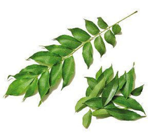 Picture of Curry Leaf - Per kg
