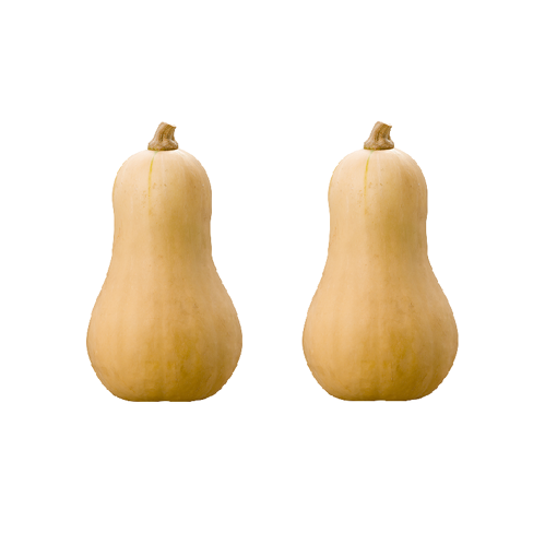 Picture of Butternut - 2's