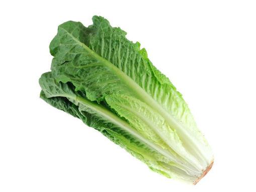 Picture of Romaine / Cos Lettuce 200g