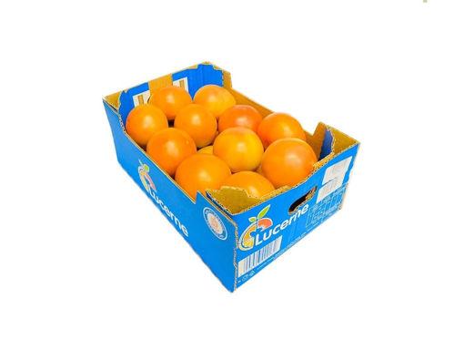 Picture of Tomato  Round - Box 3kg