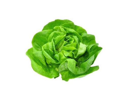 Picture of Butter Lettuce - Pillow Pack 200g