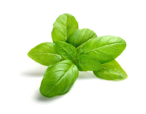 Picture of Basil - 100g