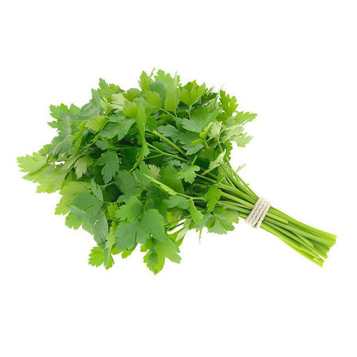 Picture of Italian Parsley  - 100g