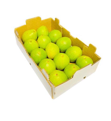 Picture of Guava - Box