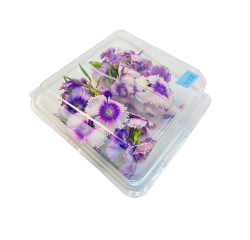 Picture of Viola Flowers 30g