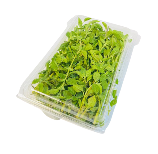 Picture of Marjoram - 30g