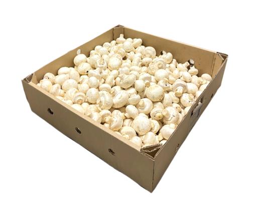 Picture of Mushroom White Button - 5kg Box